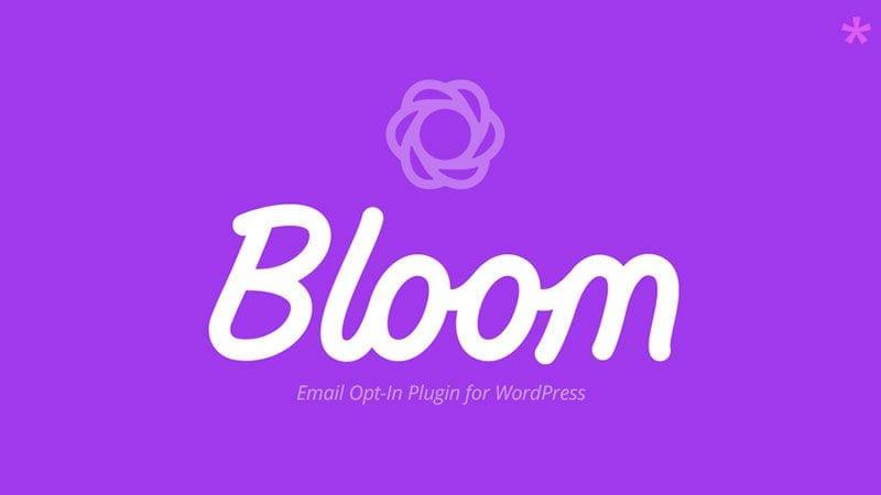 Cómo configurar Bloom para captar suscriptores en tu web